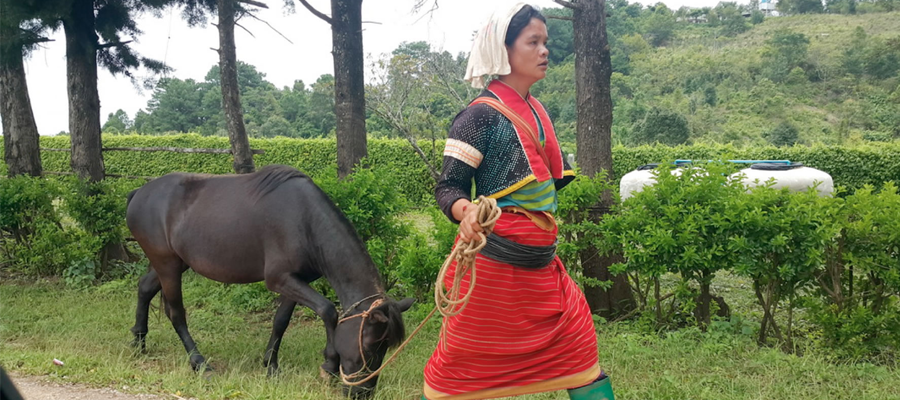 L'Isan, là où l'histoirese mêle à celle du Laos